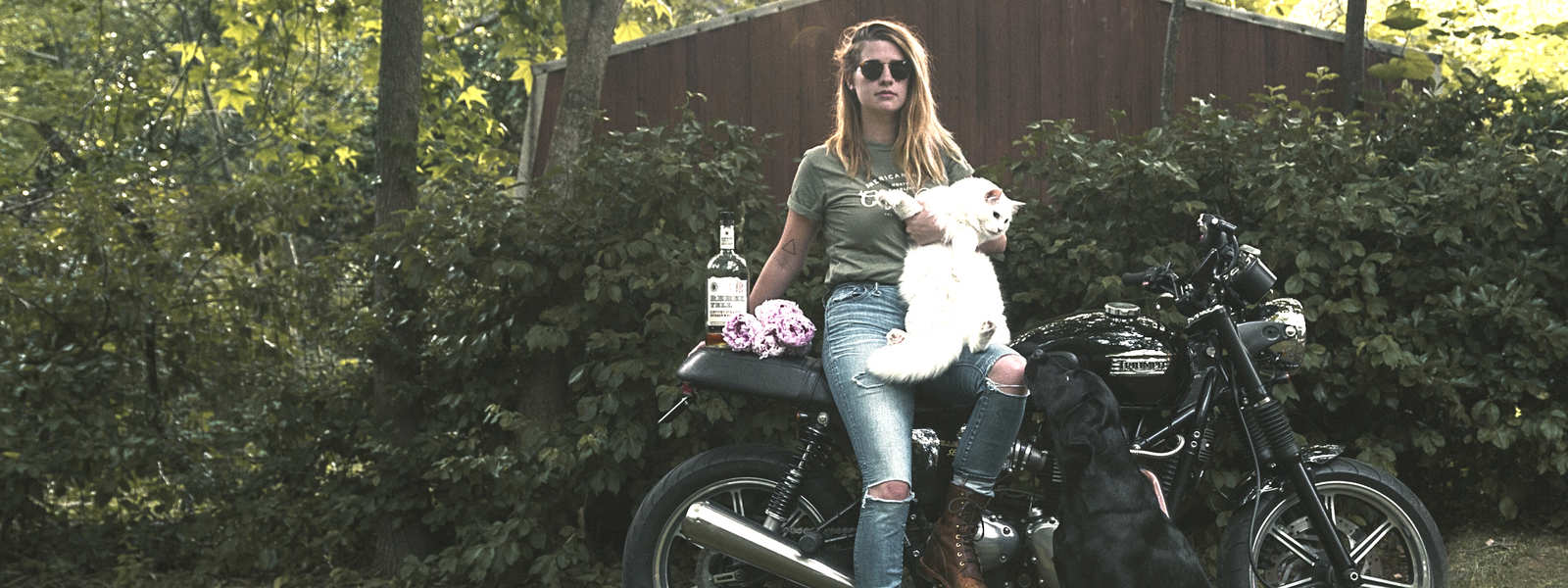 Katie, cats, and motorcycles